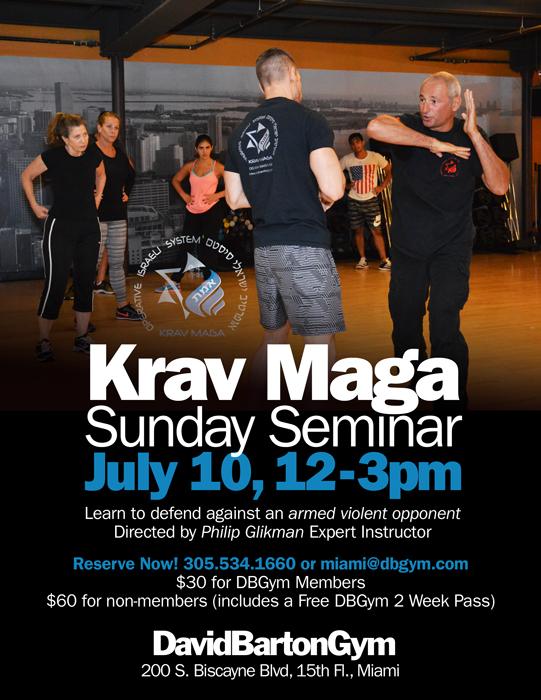 Stage Krav Maga Miami